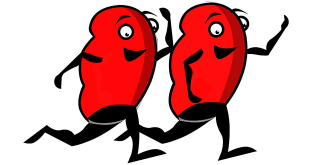 10-ways-to-protect-kidneys