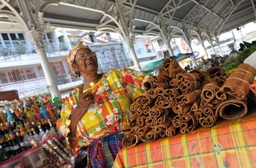 Medicinal uses of True Cinnamon