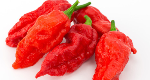 ghost-pepper
