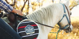 How To Choose the Best Horse Saddle Pads?
